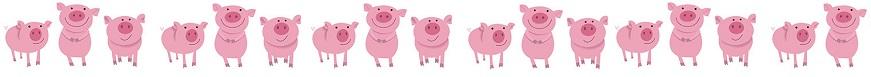 -------pig