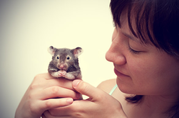 Woman Holding Hamsters