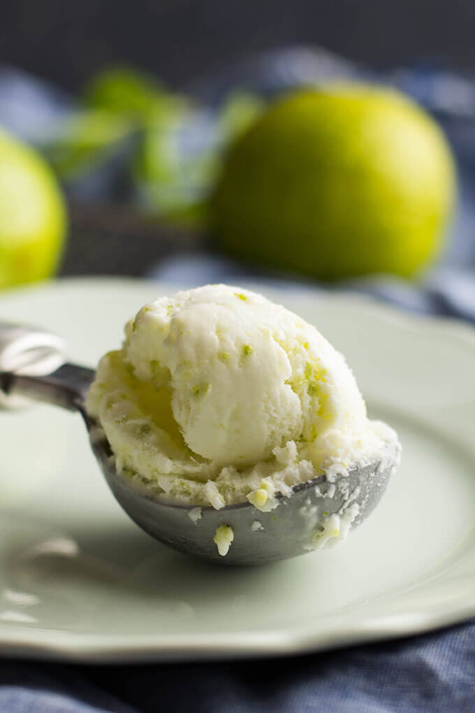 Tangy Lime Ice Cream 3