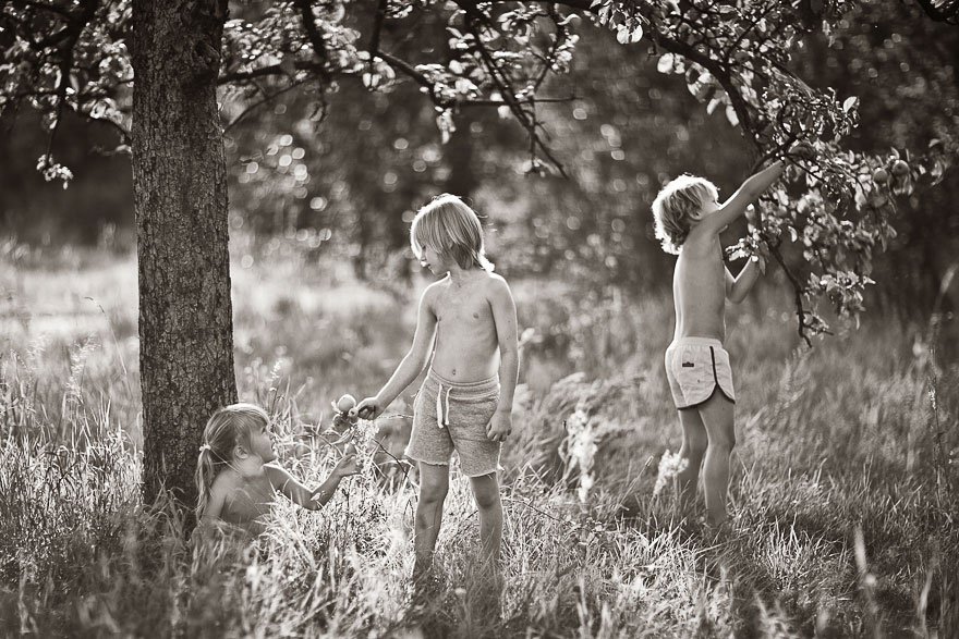 children photography summertime izabela urbaniak 5