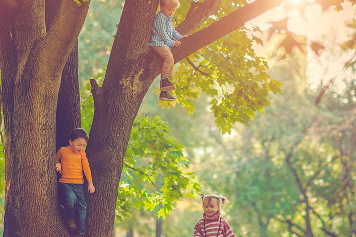 Allowing your child to climb a tree