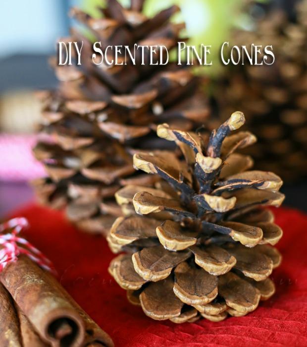 55093faa70bbb scented pine cones de