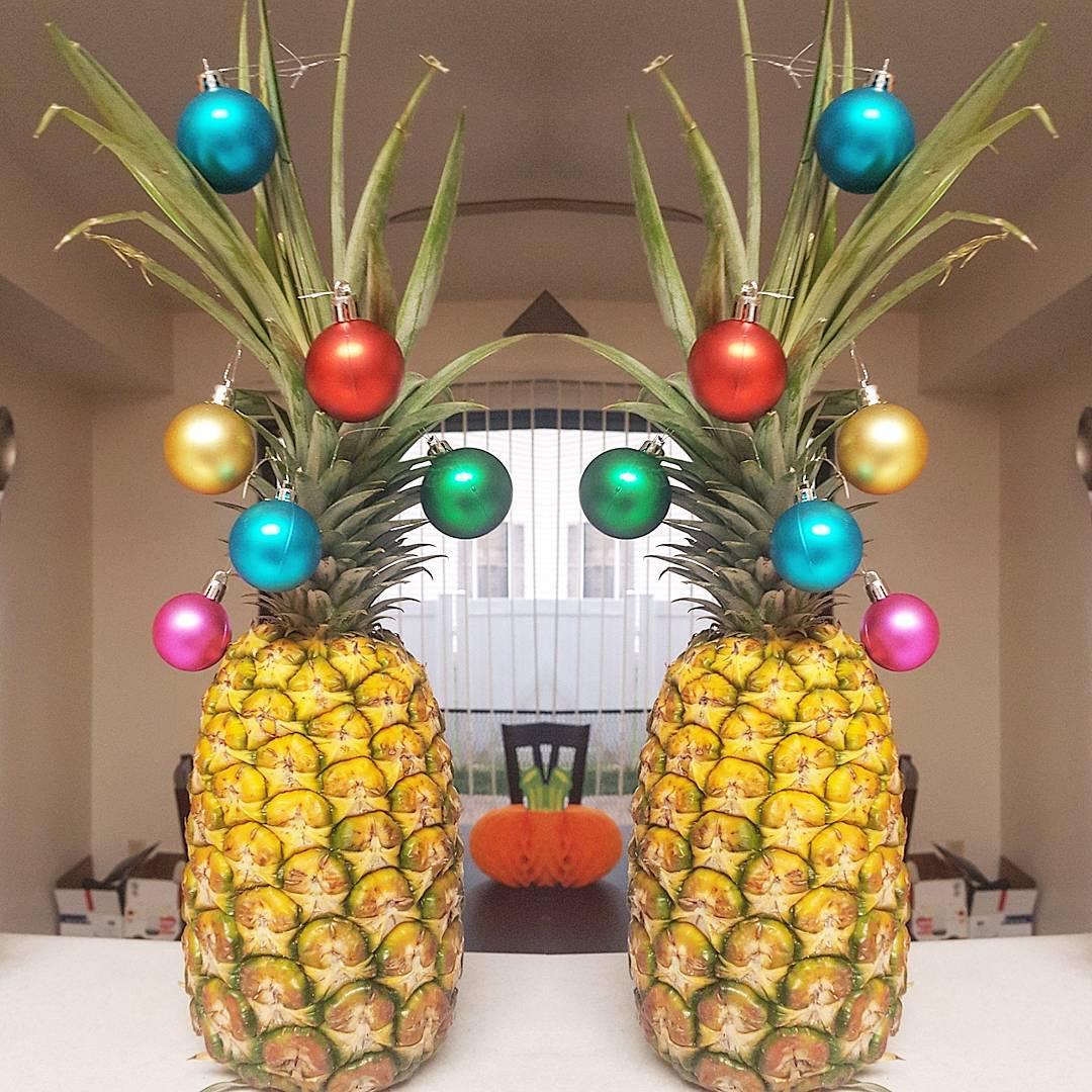 ananas stolismos