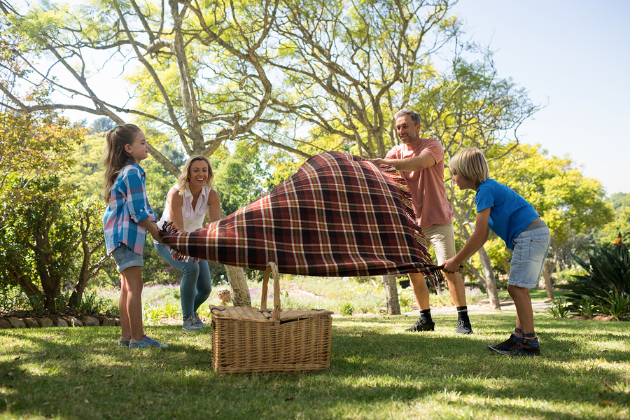 oikogeneiako picnic 4