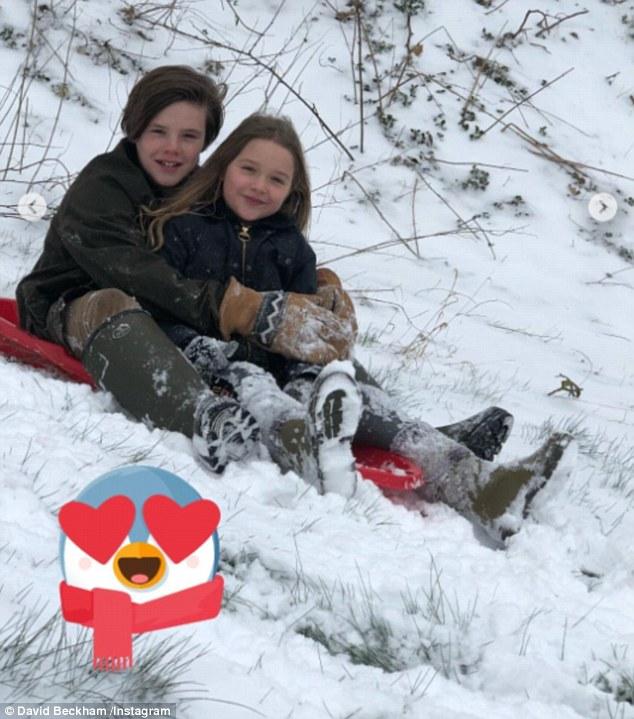 cruz harper snow