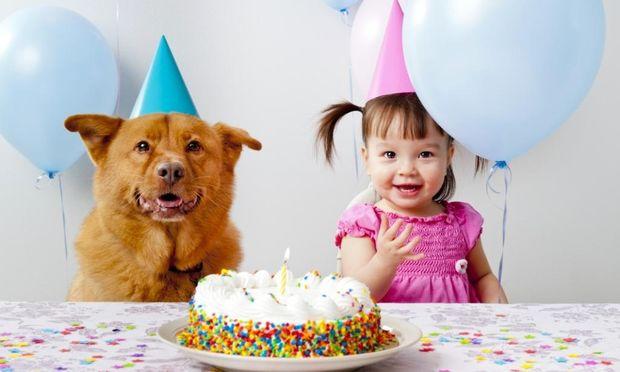 Πώς να οργανώσετε το πρώτο πάρτι γενεθλίων του μωρού σας - Χρήσιμες συμβουλές