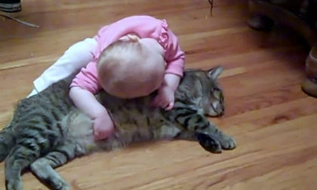 Αστείο βίντεο: Η γάτα… ήρωας στα χέρια ενός μωρού!