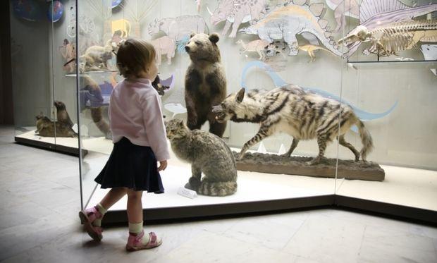 Βόλτα με το παιδί σας στο μουσείο