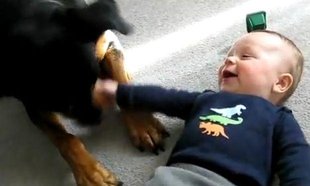 Απίστευτο βίντεο: Πώς ένα ροντβάιλερ κάνει ένα μωρό να…