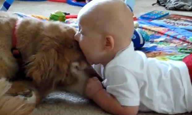 Απίθανο βίντεο: Μπόμπιρας δαγκώνει τον σκύλο!