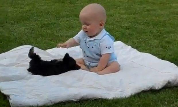 Απολαυστικό βίντεο: Ένα μωρό παίζει με ένα κουτάβι!