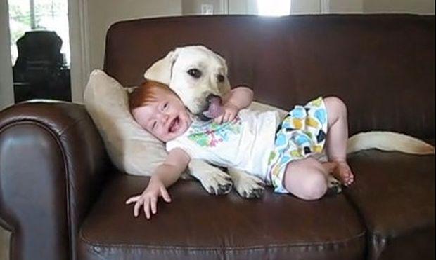 Βίντεο: 11 μηνών κοριτσάκι στην τρυφερή αγκαλιά ενός σκύλου!
