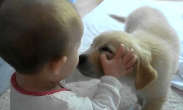Βίντεο: Μωρό και κουτάβι συναντιούνται για πρώτη φορά
