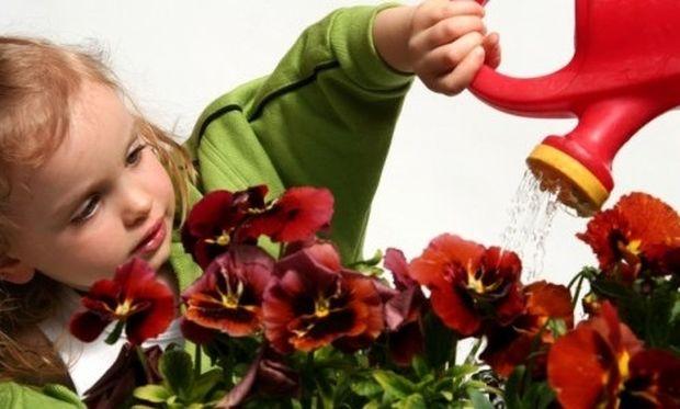 Κηπουρική με τη βοήθεια του παιδιού σας