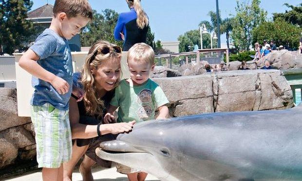 Sheryl Crow: Επίσκεψη στα δελφίνια με τους γιους της