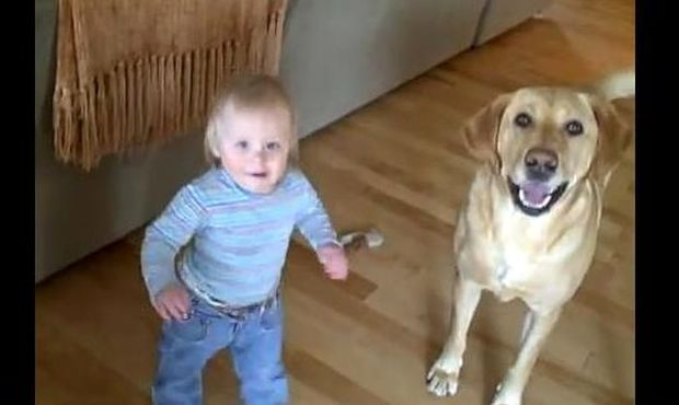 Σκύλος μαθαίνει πιτσιρίκα να πηδάει!