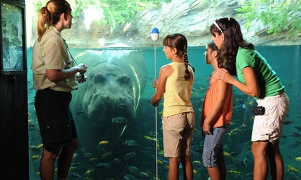 Μάθετε στο παιδί σας να αγαπάει τη φύση