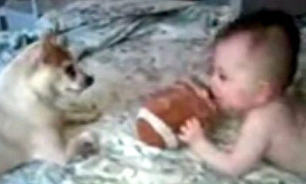 Μωρό και σκύλος παίζουν... μπάλα!