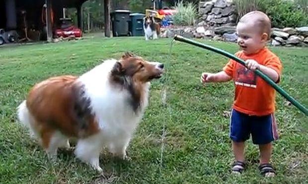 Βίντεο: Όταν το μωρό κάνει παιχνίδια με το νερό και το σκυλάκι του!