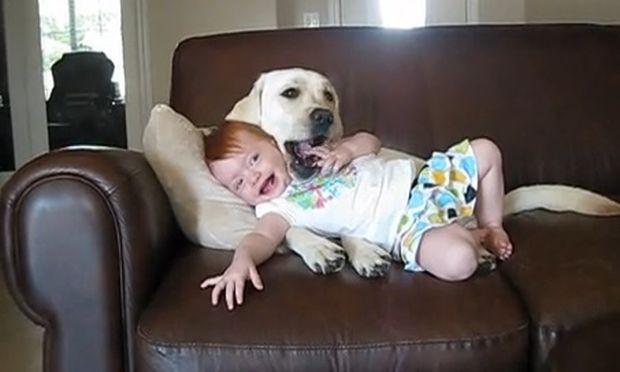 Βίντεο: Όταν το μωρό απολαμβάνει το παιχνίδι με το σκύλο!