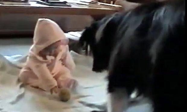Βίντεο: Σκύλος μαθαίνει το μωρό να παίζει μπάλα