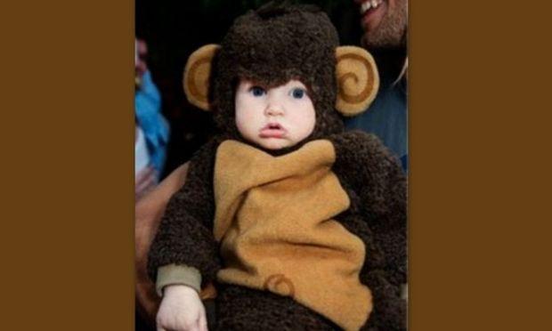 Το πιο αξιολάτρευτο μαϊμουδάκι του κόσμου!