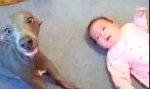 Βίντεο: Δείτε το συγχρονισμένο κλάμα ενός μωρού με το σκυλάκι του!