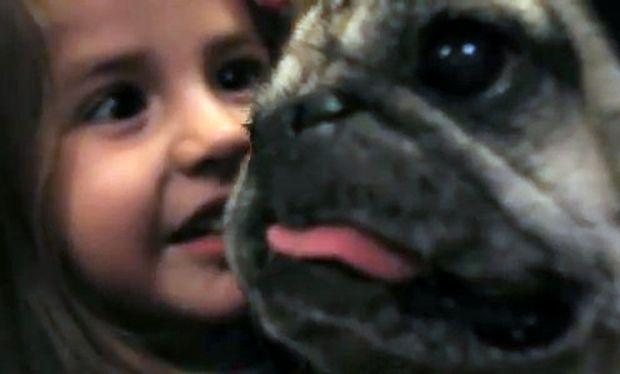 Βίντεο: Ο σκύλος σαρώνει τη Νέα Υόρκη για να βρει δώρο για τη δίχρονη φίλη του!