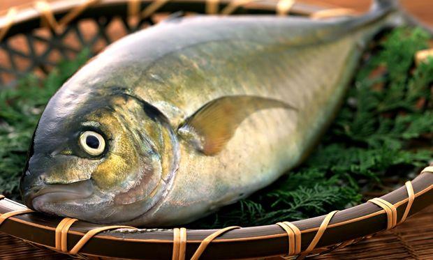 Ψάρι: Αφού είναι τόσο θρεπτικό γιατί αργεί ένα μωρό να το έχει στη διατροφή του;
