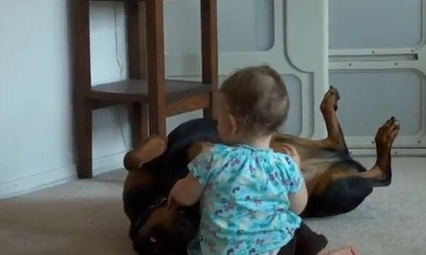 Βίντεο: Όχι, δεν την δαγκώνει… απλά παίζουν!