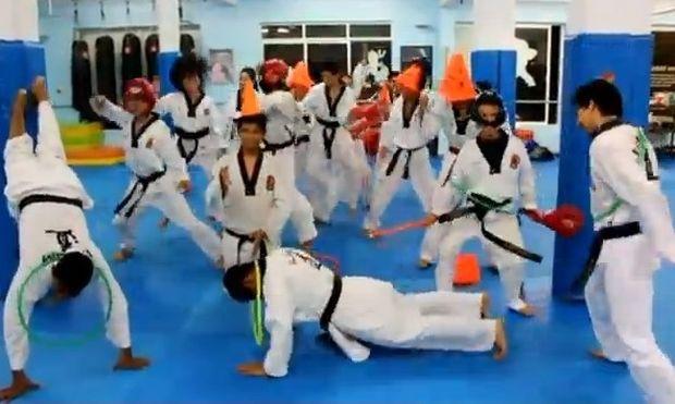 Συνδύασαν το Harlem Shake με το Karate!