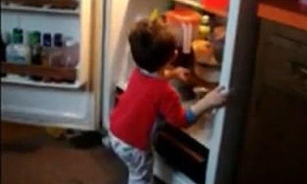 Βίντεο: Προσπαθεί να μπει μέσα στο ψυγείο και…