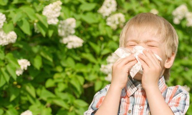 Ποιες είναι οι αλλεργίες της Άνοιξης;