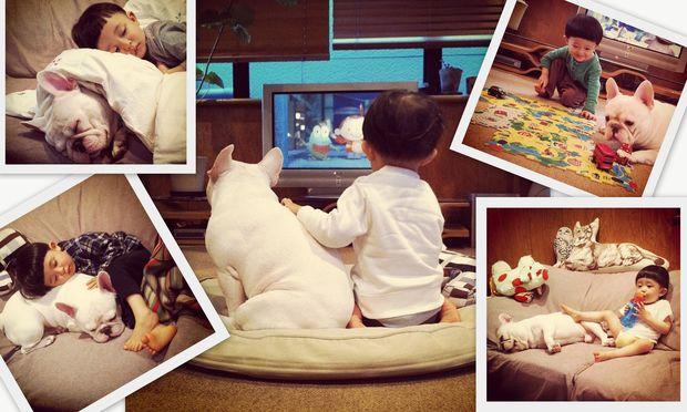 Η απίστευτη σχέση ενός μικρού αγοριού με το σκυλάκι του (εικόνες)