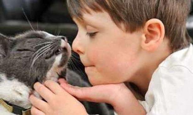 Ο γάτος που άλλαξε τη ζωή ενός παιδιού με αυτισμό!