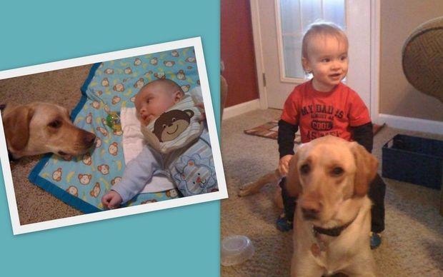 Η φιλία ενός μωρού με τον σκύλο του σε φωτογραφίες!