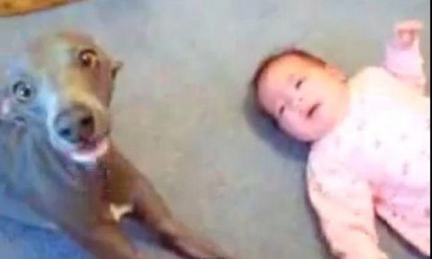 Όταν το μωρό συγχρονίζει το κλάμα του με το σκυλάκι του! (βίντεο)