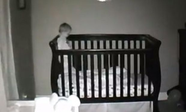 Αντί να κοιμάται κάνει… βουτιές! (βίντεο)