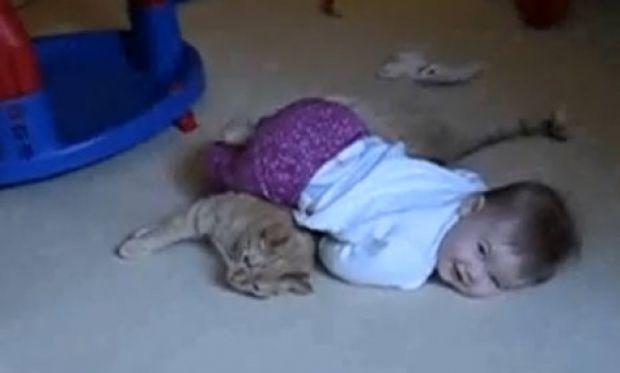 Όταν ένα μωρό αποφασίζει να παίξει με την γάτα του! (βίντεο)