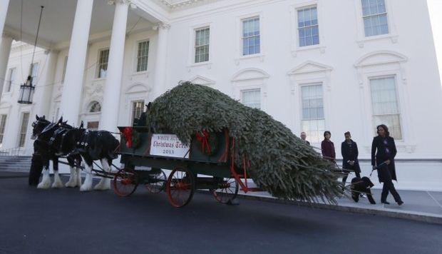Η Μισέλ Ομπάμα και οι κόρες της καλωσορίζουν τα Χριστούγεννα με δέντρο 6 μέτρων! (βίντεο, φωτογραφίες)