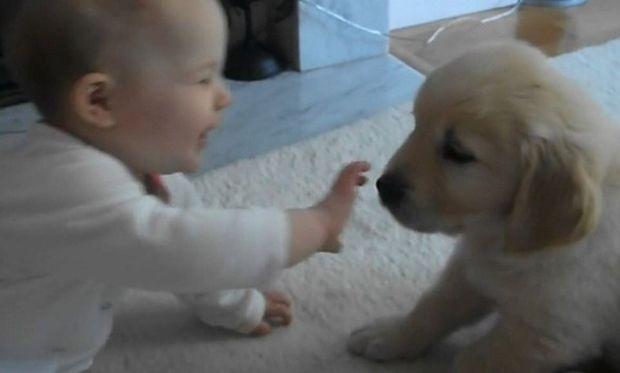 Πώς αντιδρά ένα μωρό όταν βλέπει για πρώτη φορά ένα  κουταβάκι; (βίντεο)