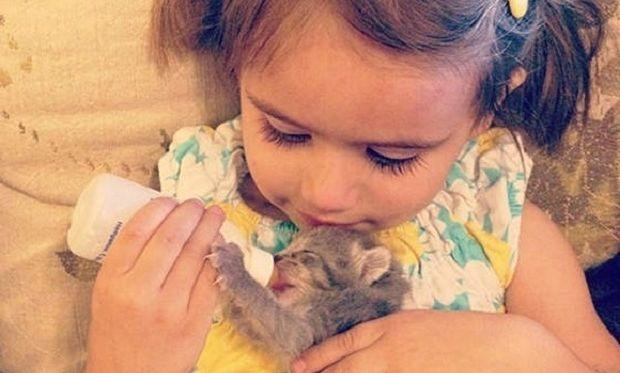Το 3χρονο κοριτσάκι έδωσε ζωή σε ένα γατάκι και έγιναν οι καλύτερες φίλες! Δείτε τις τρυφερές φωτογραφίες!