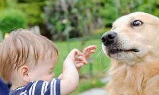 Το παιδί μου φοβάται τα ζώα! Τι να κάνω;