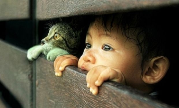 Το αγόρι και η γάτα-Η φωτογραφία που κάνει το γύρο του κόσμου
