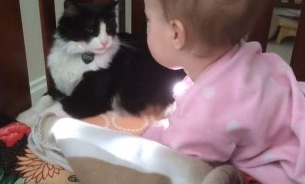 Υπέροχο! Γατούλα, πλένει ένα μωράκι σαν να ήταν το γατάκι της! (βίντεο)