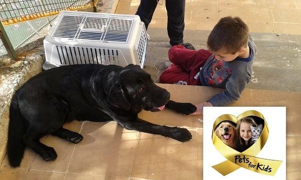 Ολοκληρώθηκε με επιτυχία το πρόγραμμα  «Pets for Kids» για τα παιδιά των Παιδικών Χωριών  SOS