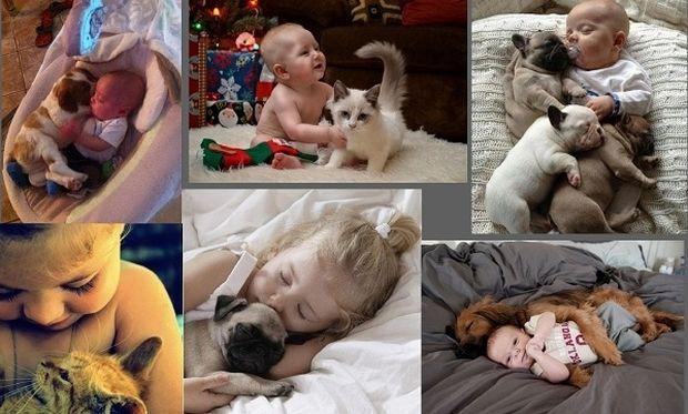 Μία σχέση αγάπης! Παιδάκια φωτογραφίζονται με τα ζωάκια τους (εικόνες)