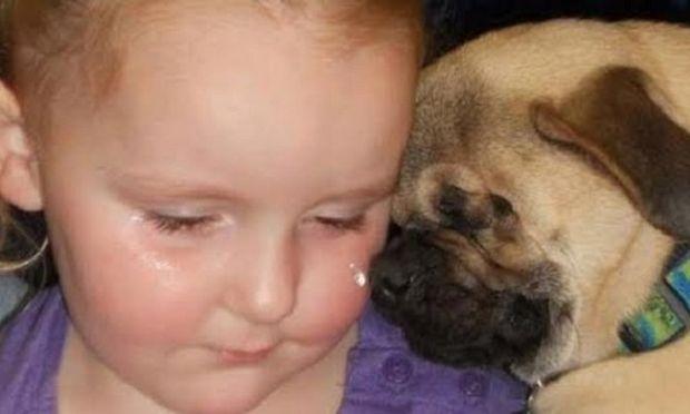 Ξάντερ, το τυφλό σκυλάκι που έχει αφιερώσει τη ζωή του στα κακοποιημένα παιδιά (εικόνες)