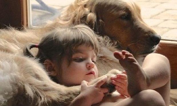 Παιδί και ζώα-Τι πρέπει να γνωρίζουμε προτού φέρουμε ένα ζώο στο σπίτι