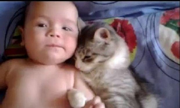 Πόσο τρυφερό! Δείτε τι κάνει μία γάτα σε ένα μωρό που είναι ξαπλωμένο (βίντεο)